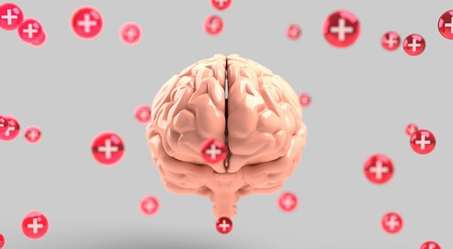 The Placebo Effect. What happens inside the brain of patients