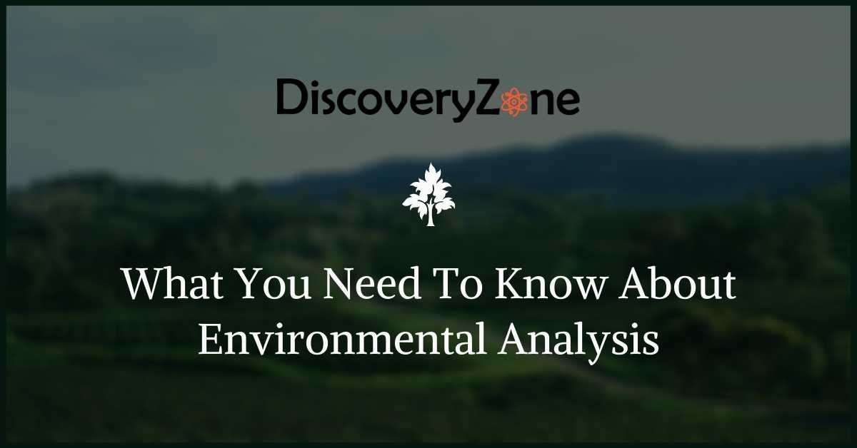 What You Need To Know About Environmental Analysis 1