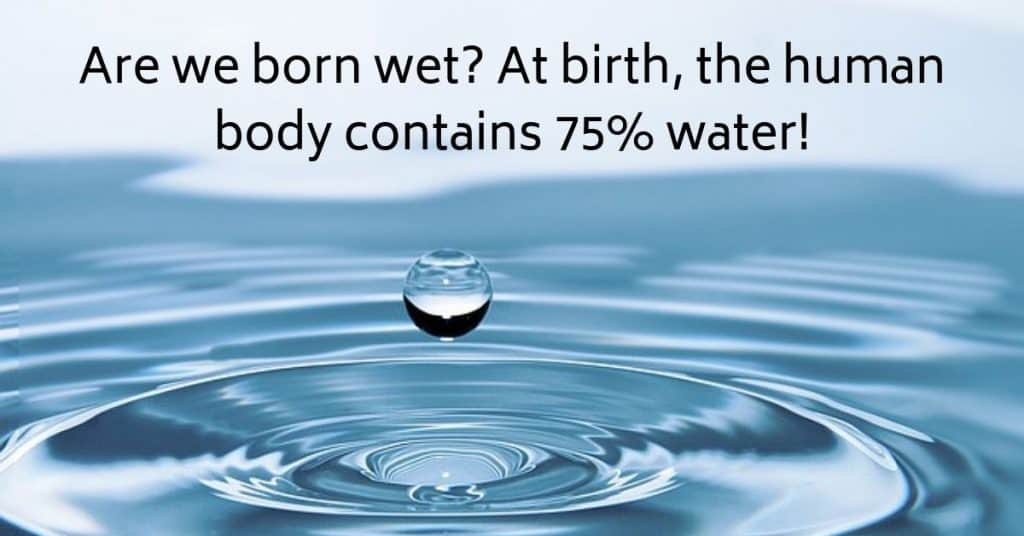 Are we born wet? At birth, the human body contains 75% water! 2