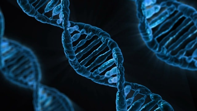 DNA - The Twentieth Century's Greatest Scientific Discovery 1